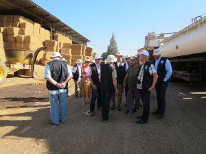 Israeli Dairy Herd Nutrition seminar