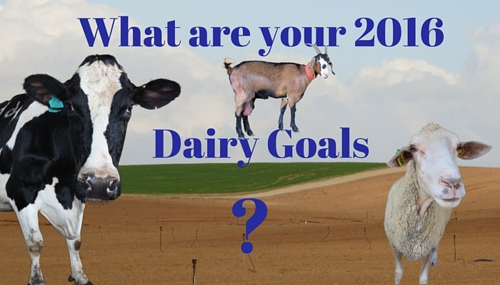 What are your 2016 Dairy Goals - (1)