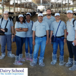 Dairy School Home page